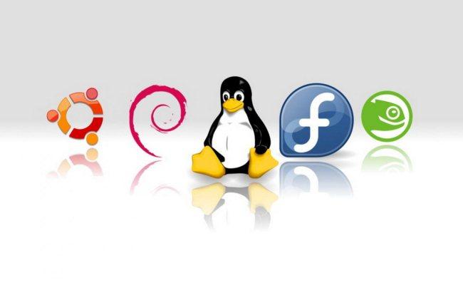 Cili OS Linux është më i mirë për File Server?