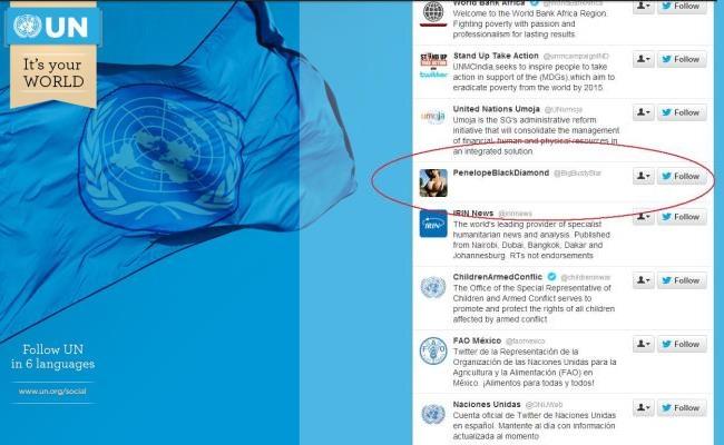Llogaria e OKB-së në Twitter ndjek 537 njerëz, duke përfshirë edhe një yll pornografik
