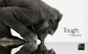 Antimicrobial Corning Gorilla Glass